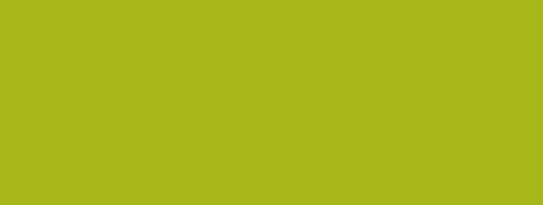 Gut fürs Dach: Schluss mit Algen, Moos und Flechten